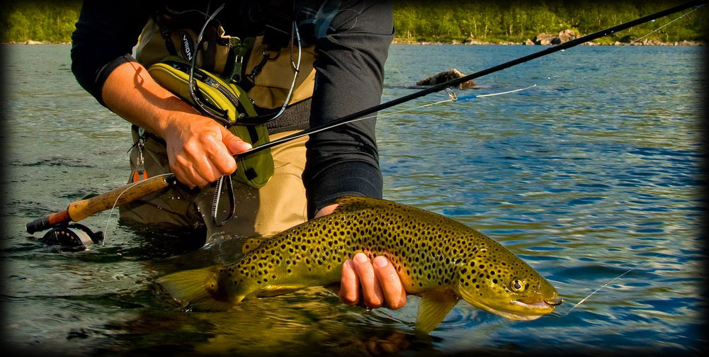 Видео, канал о рыбалке, Смотреть онлайн